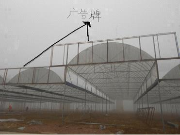 花木社区—实地探访武汉东湖花木城建设样板商棚初见