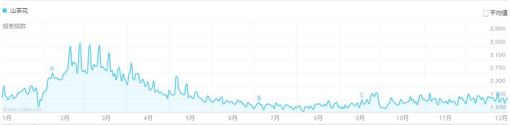 2018年山茶花价格