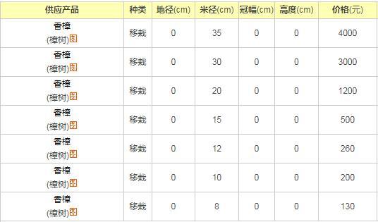 广东香樟树价格表